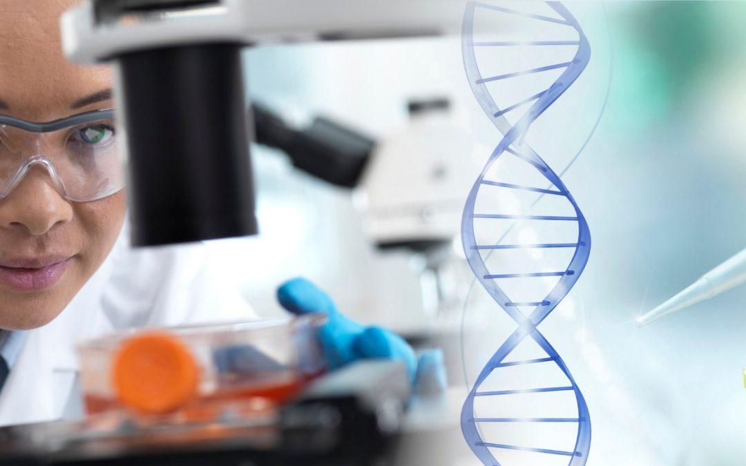 5 áreas médicas que usam células-tronco