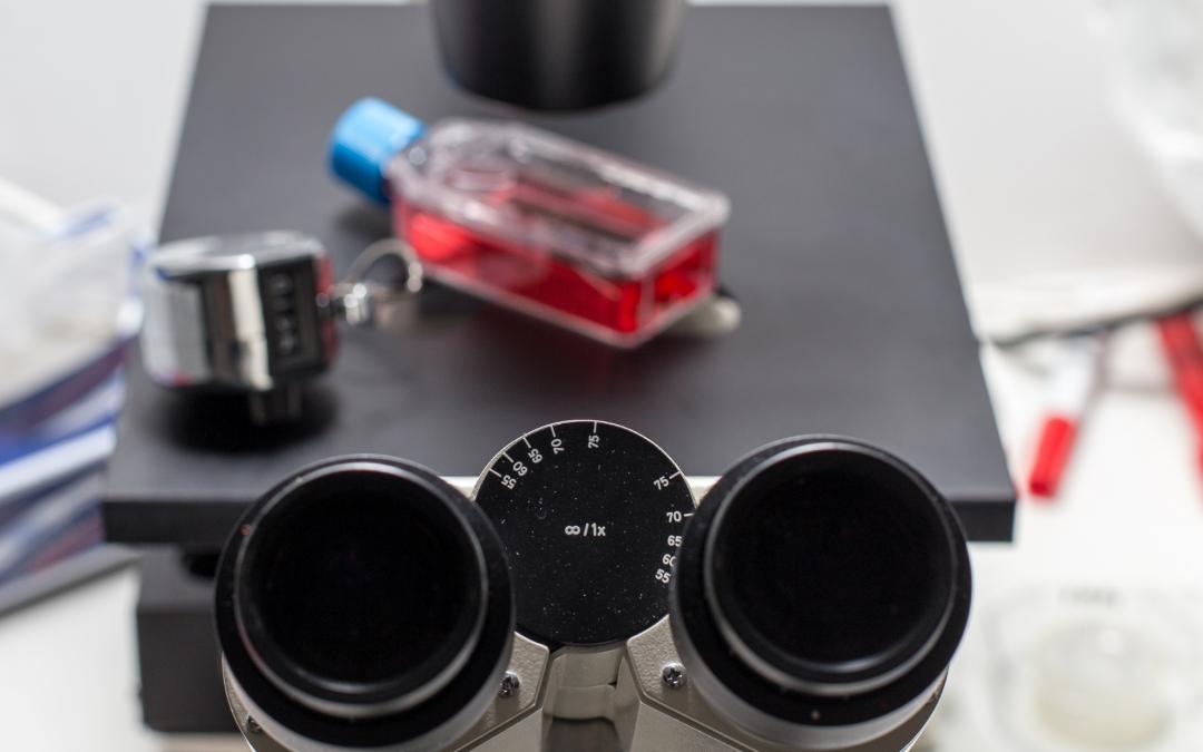 Ensaios de Qualidade: qual é sua garantia sobre a saúde das células-tronco armazenadas?