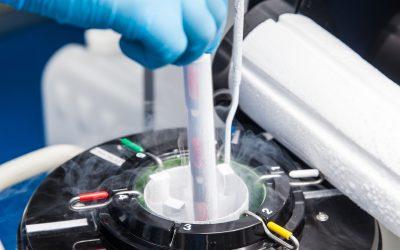 Por que todos devem guardar células-tronco?